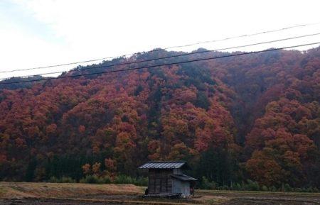 01.高山の紅葉の写真