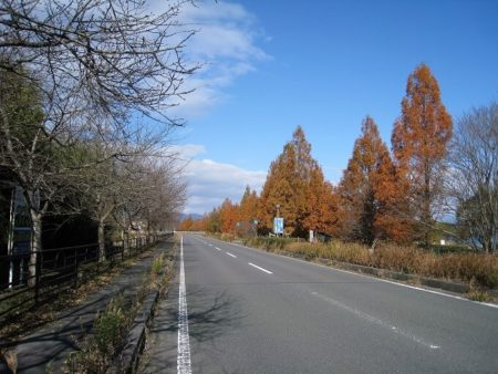 06.湖周道路