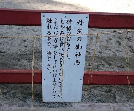 05.丹生川上神社下社の馬4