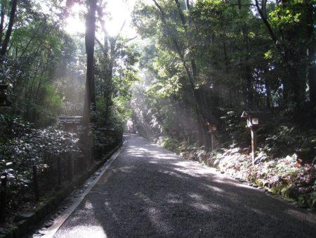 22.ニノ鳥居からの参道