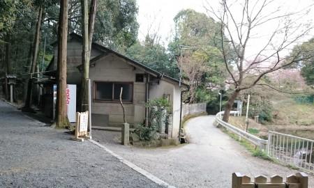 狭井神社への参道