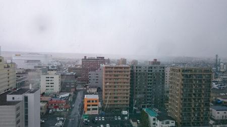 02.雪が降ってきた
