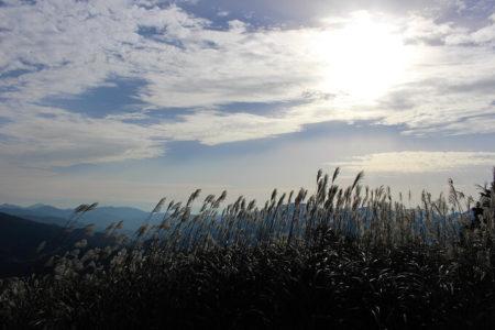 01.太陽とススキの写真