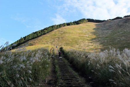 04.亀山峠へと登る山道の写真