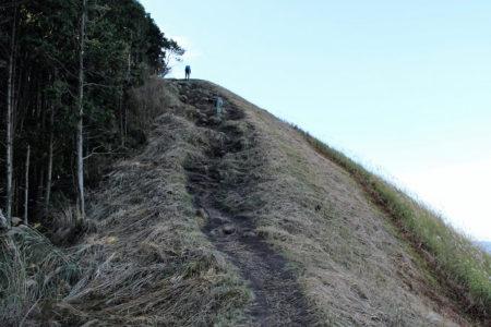 12.亀山の写真