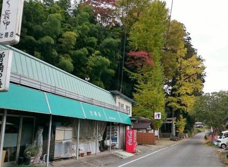 08.辻商店の写真