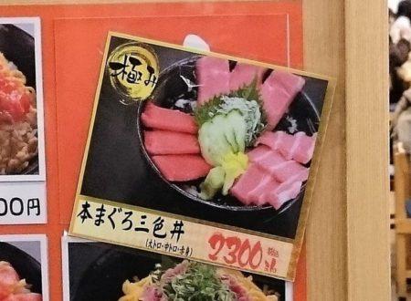 16.まぐろ三食丼目メニュー写真