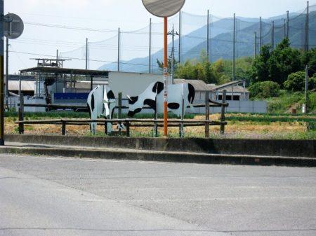 02.牛の看板の写真