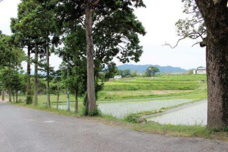 03.美しい田園風景の写真