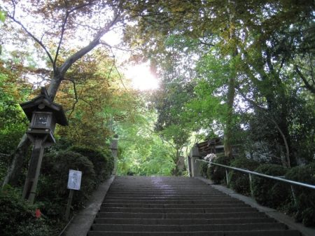 07.石段途中の写真