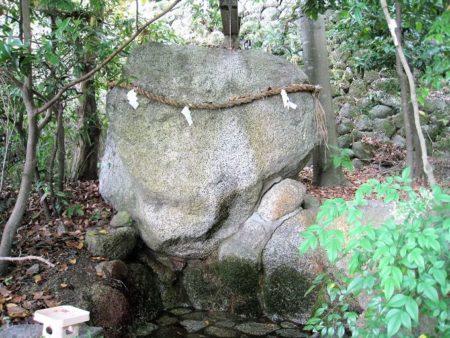 17.亀石の写真