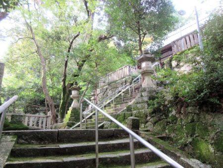 11.拝殿へと続く石段途中の写真