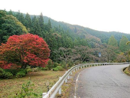03.県道109号線の写真