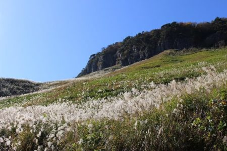 08.船上山のススキ野原の写真(2)