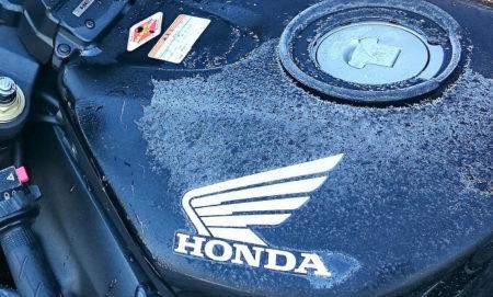 01.霜が降りた写真