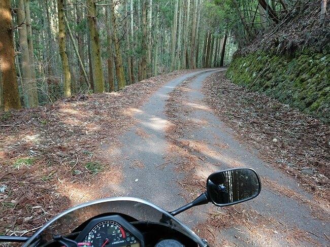 09.林道の様な県道11号線の写真
