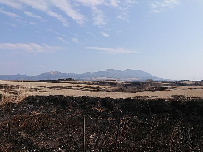 17.すす焼けた草原の写真
