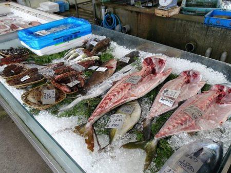陳列されてある魚の写真