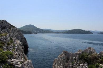 展望台から見える景色の写真