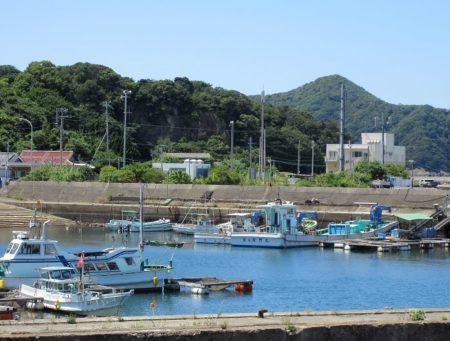 衣奈漁港の写真