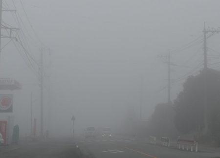 熊本の濃い霧の写真