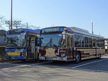 新旧カラーの近鉄バスの写真