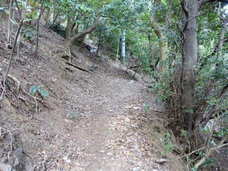 お待ちかねの登山道へ入る写真