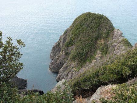 岬の最先端の丸いコブ部分