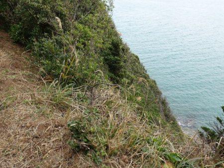 景色は良いけど気を抜けば断崖絶壁な写真