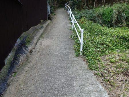 宮崎の鼻へと続く結構な急斜面の写真