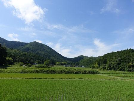 四季を通して景色が変わる田園風景の写真