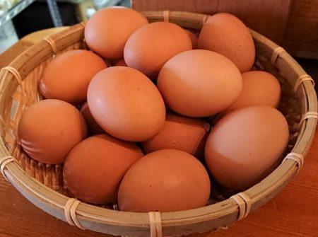 ざるに入った食べ放題の卵の写真